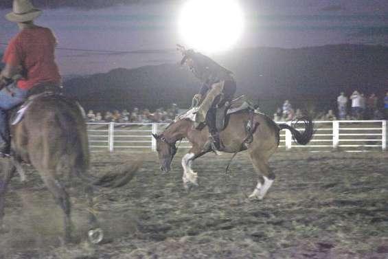 Le cheval à la fête