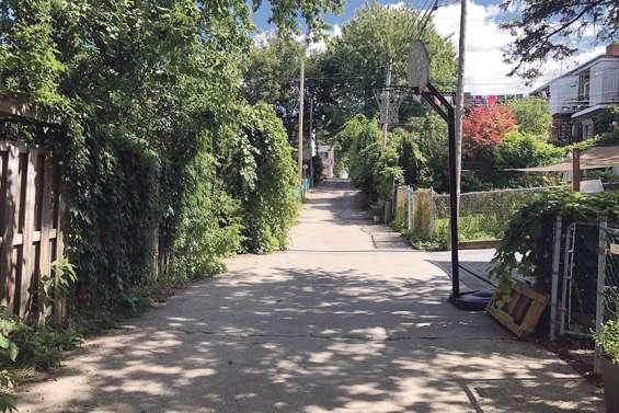 À Montréal, des ruelles devenues oasis