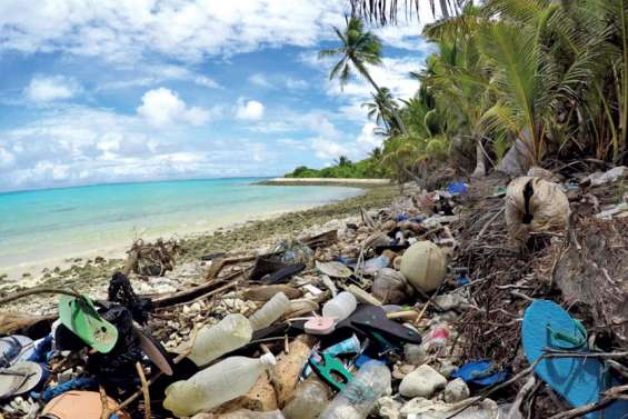 Sacs plastique interdits : tout le monde s'y met