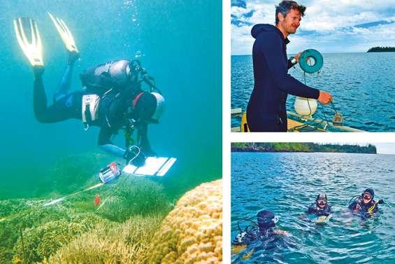 Quel est l'état de santé de nos récifs coralliens ?