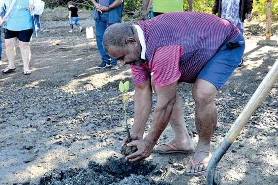 Le sentier de la mangrove Boa Délec a été inauguré