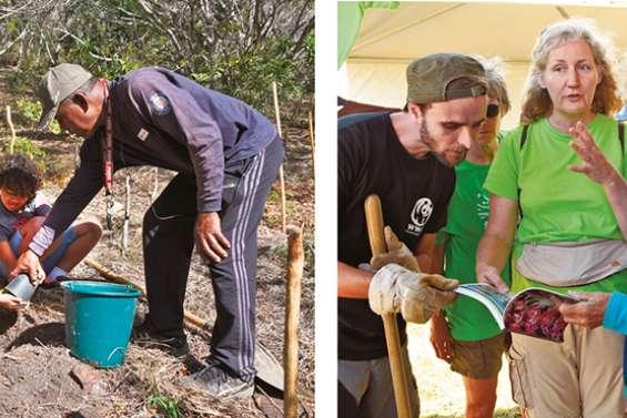 Sans entretien ni suivi, planter ne suffit pas pour régénérer la forêt sèche