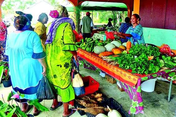 Hnasisa, un savoir-faire agricole inédit