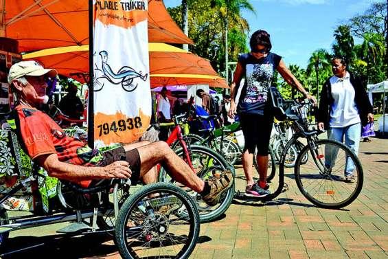 Bus, navette maritime, vélo, vivre le transport autrement