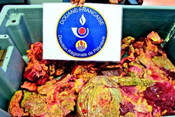 25 kilos de viande de tortue saisis par les douanes à Papeete