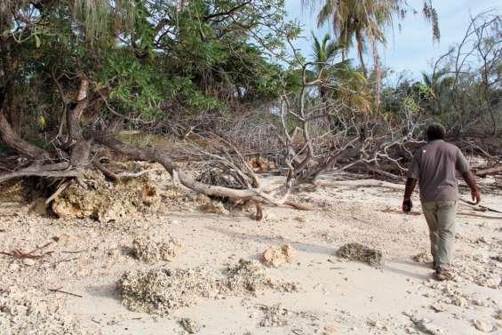 La Calédonie présente au Forum virtuel des îles