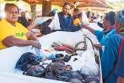 Le Jeudi province Nord a connu un franc succès attirant plus de 10 000 visiteurs