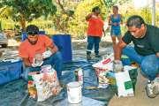 La mairie collecte les médicaments périmés à la pépinière, une première