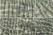 Les méduses dangereuses identifiées, de l'îlot Amédée à Bourail