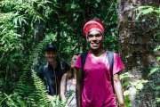L'été en forêt