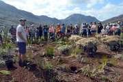 Mont-Dore: 2000 arbres plantés cesamedi à La Coulée