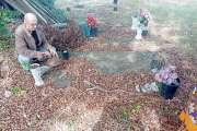 Des jeunes sous protection judiciaire restaurent tombes et mémoriaux