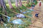 Au moins 24 morts dans des affrontements tribaux