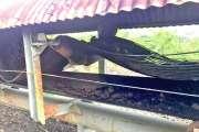 La serpentine de la SLN encore incendiée