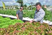 Le projet d'agriculture urbaine hors-sol impressionne sur le toit de La Niçoise