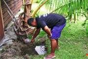 Dengue de type 2 : la menace s'éloigne