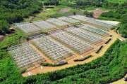 A Focola, l'agrisolaire avance à grands pas