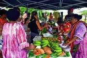 1 500 visiteurs au marché de Boulari spécial « Foire de Yaté »