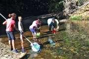 Au fil de l'eau durant les vacances scolaires