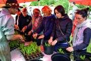 La fête de l'agriculture urbaine fait sensation