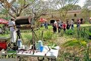 Les jardins de Méaré ouvrent leurs portes dimanche