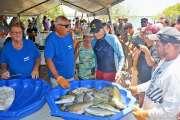La 23e édition de la Fête du bossu doré, c'est samedi, à la plage de Tanghy