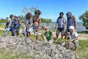 Les algues vertes peu à peu évacuées de la baie de Tina par SOS Mangroves