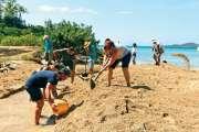 SOS Mangroves et des bénévoles ont remis la lagune de Tina en eau
