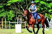 Le trophée de la Crinière a mélangé équitation classique et stock