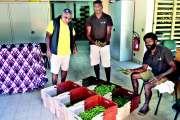 La collecte des gousses de vanille est en cours chez les producteurs des Loyauté