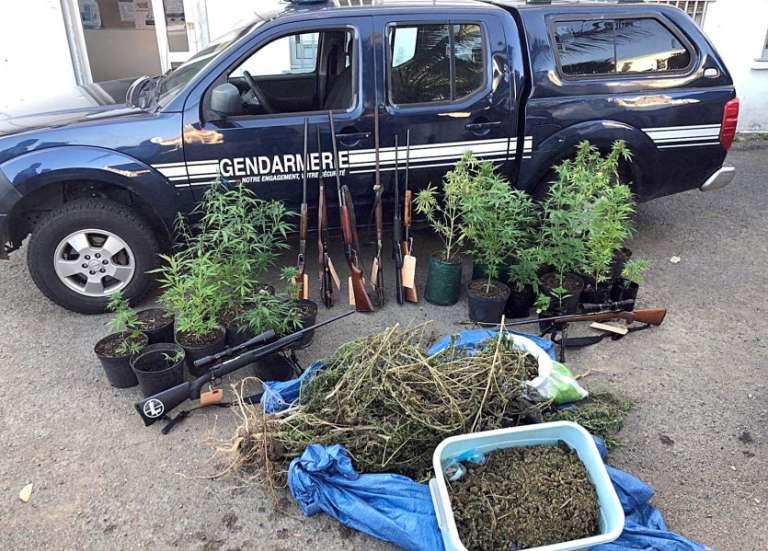 Trafic de stupéfiants démantelé à La Foa: trois kilos de cannabis, des armes et de l'argent liquide saisis