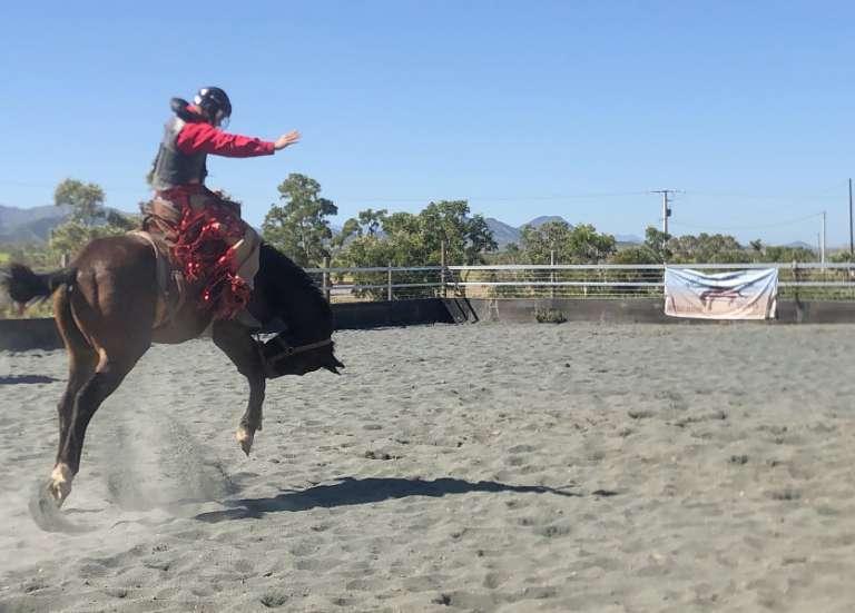 Rodéo et bronc riding