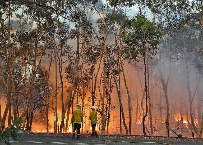 Des incendies fusionnent en « mégafeu » près de Sydney